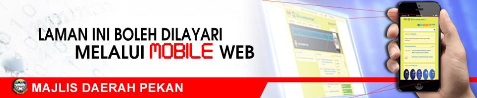Web Mobile